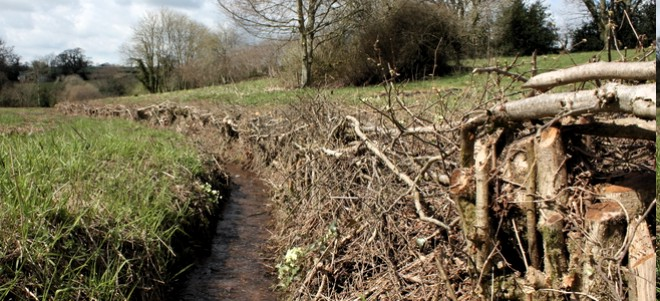 A ditch after clearing